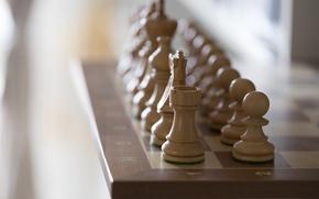 Обои игра, фигуры, доска, шахматы