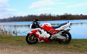 Картинка Мото, Honda, спортбайк, CBR600F2