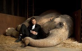 Картинка актер, вампир, Сумерки, Мужчина, Роберт Паттинсон, Воды слонам, слониха, эдвард каллен