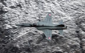 Картинка оружие, самолёт, Tiger II, F-5E