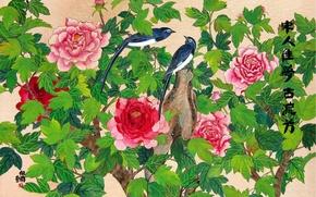 Картинка цветы, птица, рисунок, арт, Китай