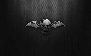 Картинка сетка, черный, крылья, Череп