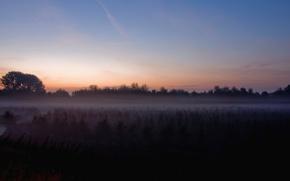 Обои луна, туман, поле