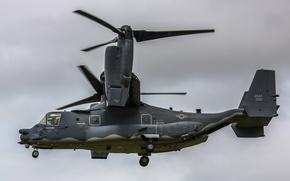 Картинка конвертоплан, Osprey, транспортный, Bell V-22
