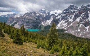 Картинка лес, горы, Канада, Альберта, Banff National Park, Alberta, Canada, Moraine Lake, Valley of the Ten …