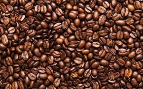 Картинка coffee, seeds, toasted