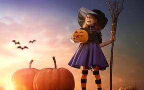 Обои закат, тыква, sunset, child, Pumpkin, Halloween, girl, Хэллоуин, метла, летучая мышь, шляпа, девочка