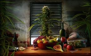 Обои книги, пакет, вино, тарелка, куст, виноград, бутылка, стол, окно, крыса, жалюзи, натюрморт, груши, банан, трава, ...