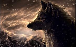 Картинка лес, снег, горы, Волк, метель, art, шрамы, wolfroad, two steps from hell