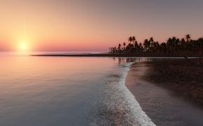 Картинка закат, тропики, пальмы, океан, побережье