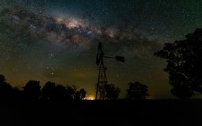 Картинка космос, звезды, деревья, тени, млечный путь