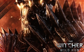 Обои rpg, CD Projekt RED, The Witcher 3: Wild Hunt, Ведьмак 3: Дикая охота, Warner Bros. ...