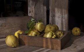 Обои фон, фрукты, айва