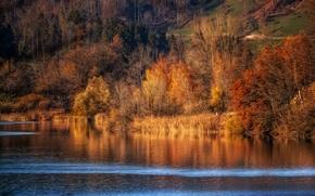 Картинка осень, река, обработка