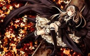Картинка девушка, Аниме, Арт, листики, розочки, Suigintou, Rozen Maiden