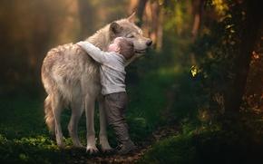 Обои дружба, волк, мальчик