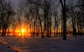 Картинка city, Canada, river, trees, winter, glow, snow, island, morning, fog, sunrise, Ontario, Quebec, mist, ray