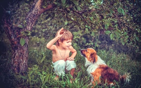Картинка лето, дети, дерево, настроение, собака, мальчик, сад, обои от lolita777, дрессировка