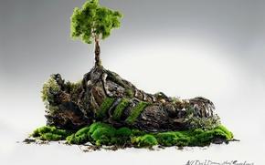 Картинка Стиль, Дерево, Трава, Адидас, Adidas, Кед, Originals