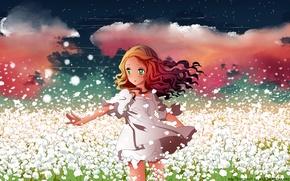 Обои цветы, арт, аниме, лепестки, девушка, поле, h2so4, небо, kuzakawe maron, звезды, облака