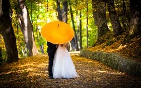 Картинка осень, девушка, деревья, любовь, желтый, зонтик, обои, настроения, женщина, зонт, костюм, wallpaper, мужчина, love, парень, …