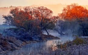 Картинка природа, туман, река, утро