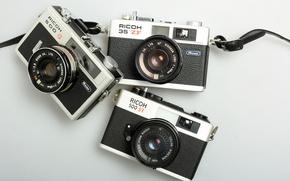 Картинка макро, фон, камеры, Ricoh 35 ZF, Ricoh 500 G, Ricoh 500 ST