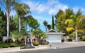 Картинка дорога, небо, облака, деревья, дом, пальмы, гараж, ограда, Калифорния, ступеньки, США, кусты, Laguna Niguel