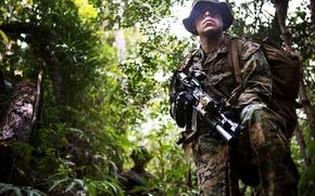 Картинка лес, оружие, солдат, камуфляж