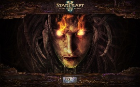 Starcraft 2, Heart of The Swarm, Blizzard, Старкрафт обои