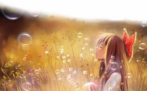 Картинка поле, трава, девушка, пузырьки, арт, профиль, touhou, hakurei reimu, a luo