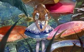 Картинка грибы, Алиса, девочка, бантики, Alice in Wonderland, Alice