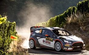 Картинка Ford, Пыль, Поворот, Germany, WRC, Rally, Ралли, Fiesta, Robert Kubica