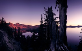 Обои деревья, озеро, горы, закат
