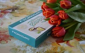 Картинка листья, красный, зеленый, коробка, голубой, Цветы, конфеты, тюльпаны, sweets