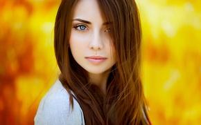 Картинка девушка, модель, портрет, красавица, шатенка