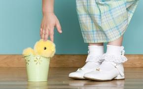 Обои праздник, рука, Пасха, кружева, цыплёнок, ребёнок, Easter, носочки, ведёрко