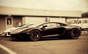 Обои Lamborghini, cars, auto, Aventador LP700-4