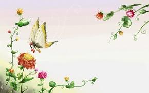 Обои лето, рисунок, бабочка