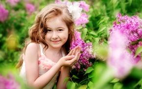 Картинка девочка, цветы, кокетка, сирень, красавица, улыбка