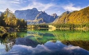 Картинка лес, деревья, горы, озеро, отражение, скалы, солнечно