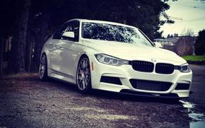Обои bmw, f30, wheels, stance, white