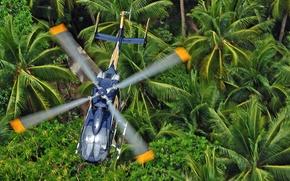 Картинка джунгли, полёт, вертолёт, лопасти, многоцелевой, Eurocopter, EC145