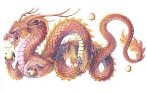 Картинка дракон, чешуя, символ