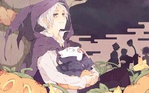Картинка дерево, аниме, конфеты, тыквы, Хэллоуин, цветки, Natsume, Natsume Yuujinchou, Няко-сенсей, ёкаи, Нацумэ, Тетрадь дружбы Нацумэ, …