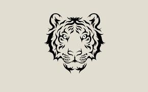 Картинка морда, тигр, минимализм, светлый фон, tiger