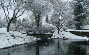 Картинка зима, снег, природа, пруд, Nature, winter, snow, pond