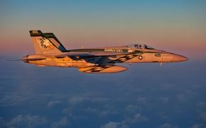 Картинка полет, истребитель, пилот, Super Hornet, F-18, палубный