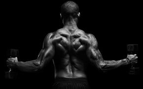 Картинка man, back, muscular