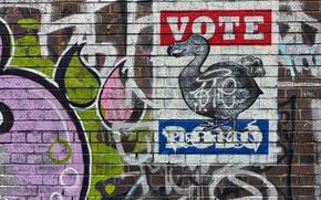 Картинка фон, стена, графити